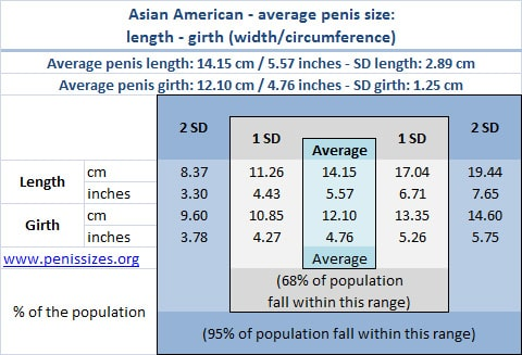 Asian american average and normal penis size range - length and girth